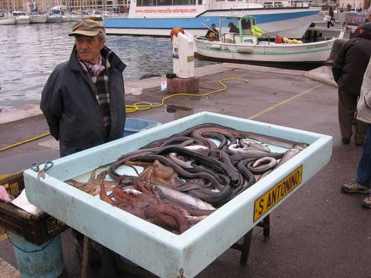 Marseille - rybí trh pri prístave, 10.3.2008 © František Halčák