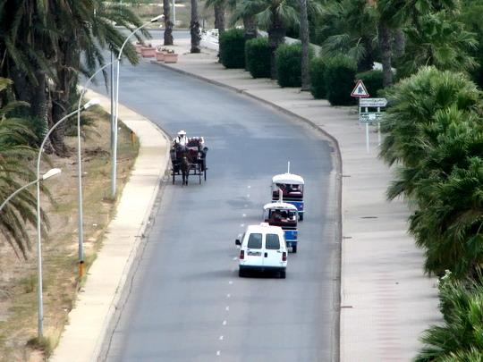 12.06.2008 - Skanes: příklad dopravy - kočár, louage a 2x tuk-tuk © PhDr. Zbyněk Zlinský