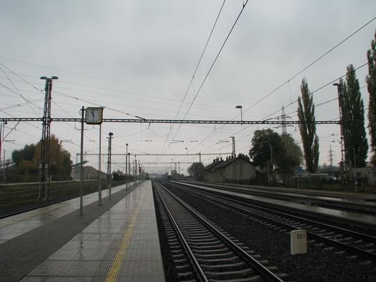 29.10.2008 - Mohelnice: deštěm zmáčené olomoucké zhlaví © PhDr. Zbyněk Zlinský