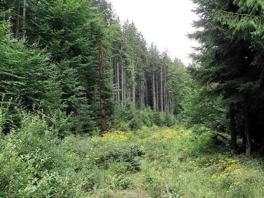 Pohled na trať ze státní hranice do Polska dne 18.8.2007 © PhDr. Zbyněk Zlinský