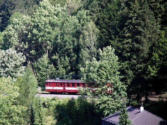 17.08.2009 - Horní Lipová: 831.234, Os3608 na Slezském Semmeringu © Radek Hořínek