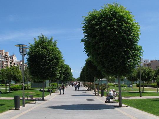 07.06.2009 - Palma, Parc de les Estacions: pohled od vstupu z Plaça d'Espanya © PhDr. Zbyněk Zlinský