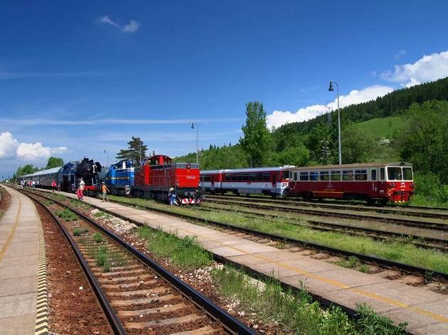 Rôznorodosť na stanici v Hornej Štubni. © Radovan Plevko