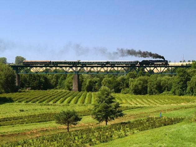 Šľachtičná na Devánskom viadukte medzi Myjavou a Brestovcom. © Radovan Plevko