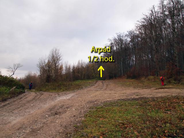rázcestie Nad Vlčiarňou – tu treba ísť strednou lesnou cestou...