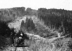 Úvraťová lesná železnica Lednické Rovne - Zubák
